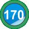 Березовский округ № 170